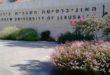 האוניברסיטה העברית בירושלים - תואר שני ביינות