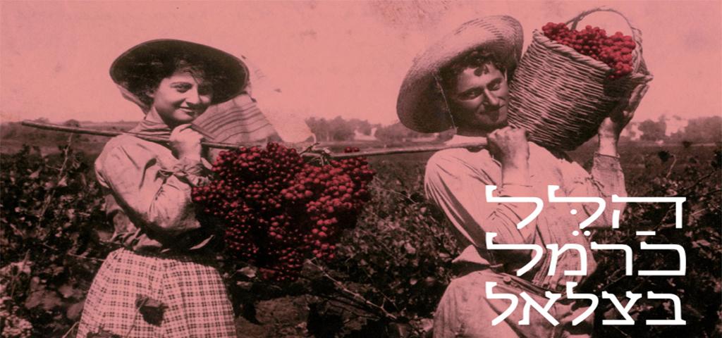 הלל כרמל בצלאל - תערוכות לחובבי היין